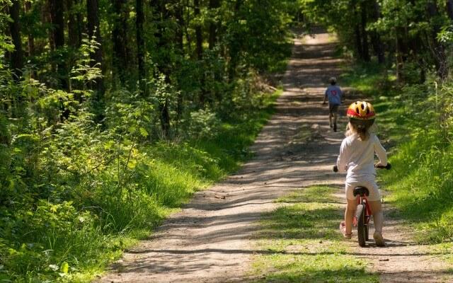 ストライダーとは?自転車に乗る練習にもストライダーが最適な理由